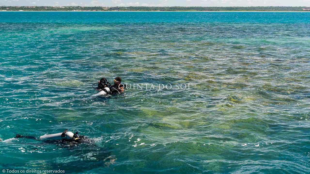 mergulhadores-passeio-em-recife-de-fora-8332480