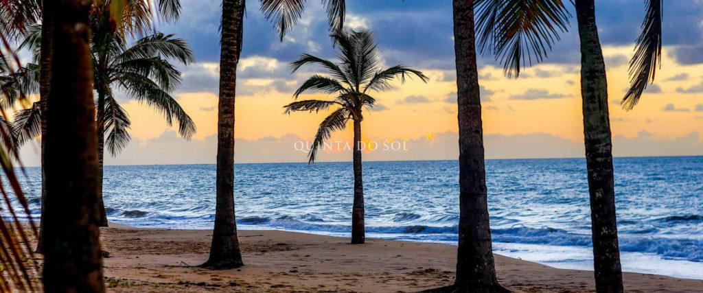 praia coqueiros