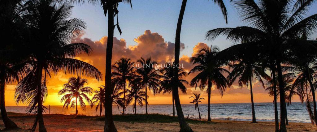 Praia coqueiros trancoso