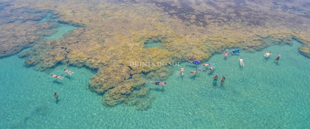 Banhistas praticando mergulho em área de corais no mar aberto.