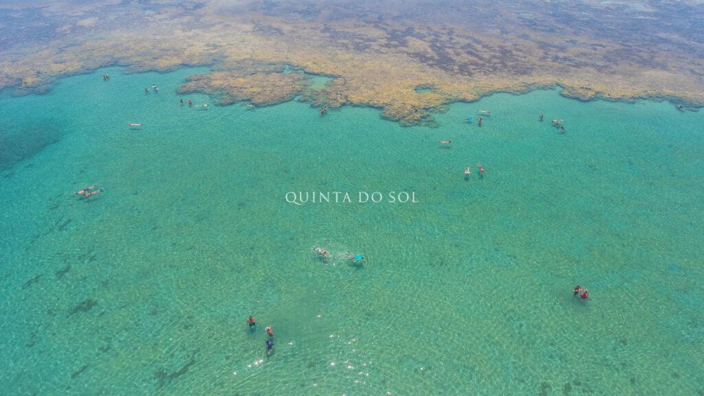 Mergulho em Recife de Fora
