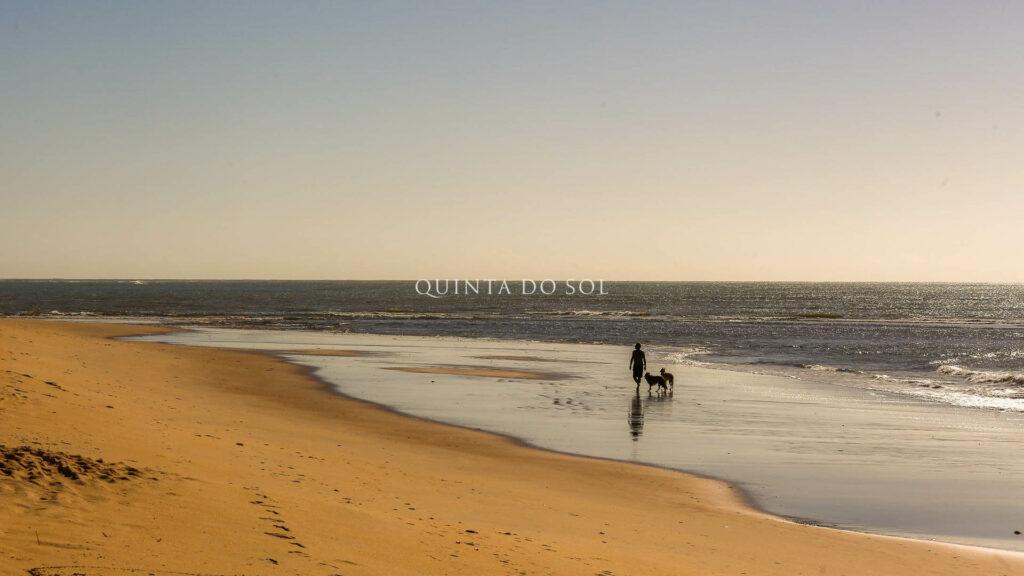 Passear na Praia de Curuipe